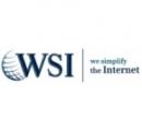 Logo Franquicia Consultoría WSI