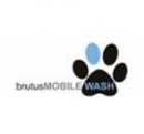 Logo Franquicia Brutus Mobile Wash