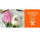 Logo Franquicia Speaking Roses