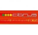 Logo Franquicia Citrus Lounge