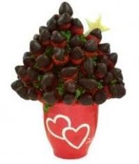 Franquicia Frutas Expresivas imagen 2