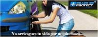 Franquicia Plus 15 Protect imagen 2