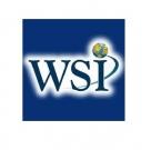 Logo Franquicia WSI Colombia