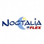 Logo Franquicia Noctalia Flex