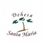 Logo Franquicia Dehesa de Santa María