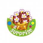 Logo Franquicia Surprise