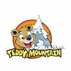 Logo Franquicia Teddy Mountain México