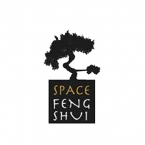 Logo Franquicia Space Feng Shui