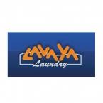 Logo Franquicia Lavaya