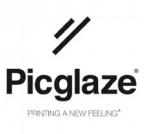Logo Franquicia Picglaze